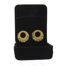 Stainless Steel wholesale Earring with Cz Yellow Gold Boxed