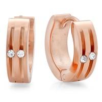 Rose Gold Stainless Steel Earrings