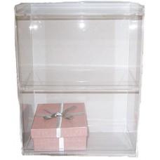Plastic 2 shelf Display